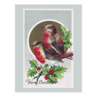 English Robins and Holly Vintage Christmas Postcard