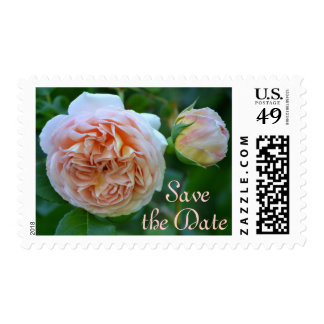 English Rose Save the Date Postage