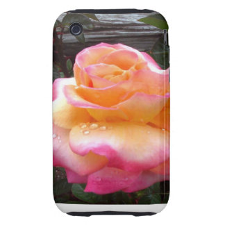English Rose Tough iPhone 3 Cover