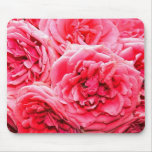 English Roses Mouse Pads