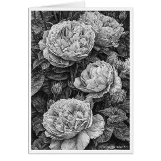 English Roses Pen and Ink Drawing Card