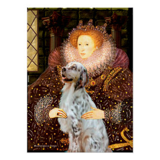 English Setter 1 - Queen Poster