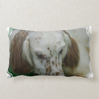 english-setter-37.jpg pillow