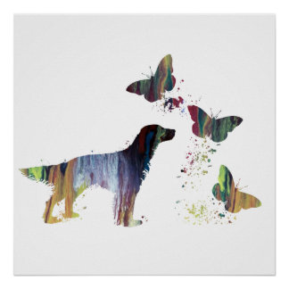 English Setter And Butterflies Poster