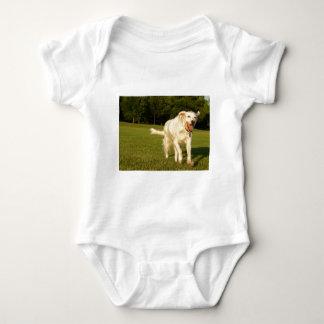 English Setter Baby Bodysuit
