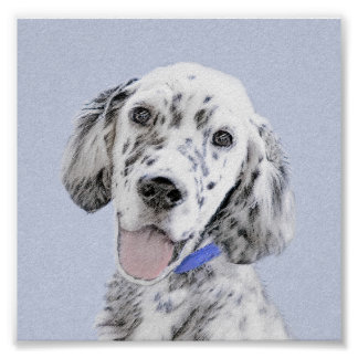 English Setter Blue Belton Painting Dog Art Poster