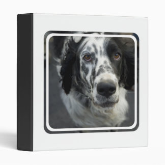 English Setter Dog Binder