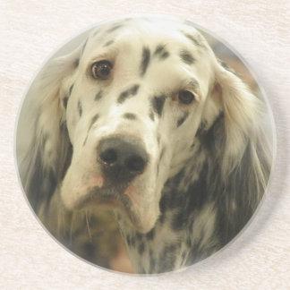 English Setter Dog Coasters