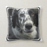 English Setter Dog Pillow