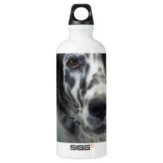 English Setter Dog SIGG Traveler 0.6L Water Bottle