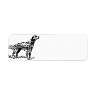 english setter drawing.png label