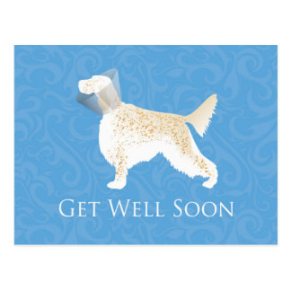 English Setter Get Well Soon Dog Silhouette Postcard