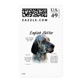 English Setter History Design Postage Stamps
