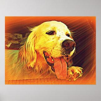 English Setter Hunting Dog Poster