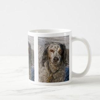 English Setter in Snow 3 Mugs