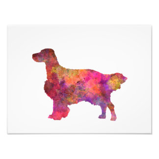 English Setter in watercolor Photo Print