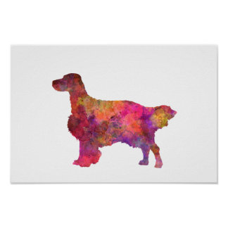 English Setter in watercolor Poster