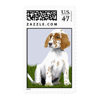 English Setter postage stamp