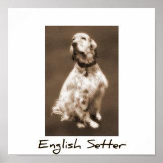 English Setter Poster