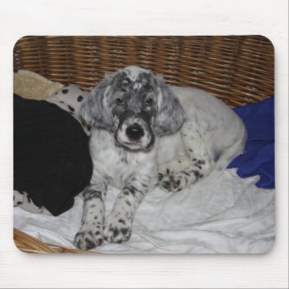 English Setter Puppy Mouse Pad