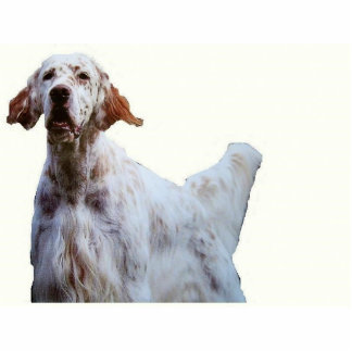 english setter sculpture