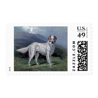English Setter Stamps