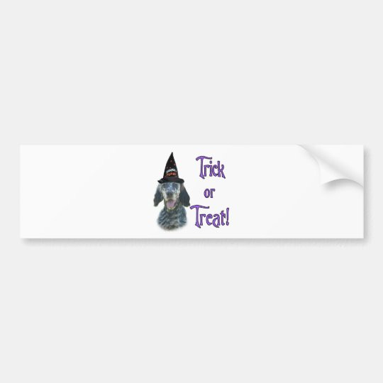 English Setter Trick Bumper Sticker