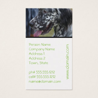 English Setter Up Close Business Card