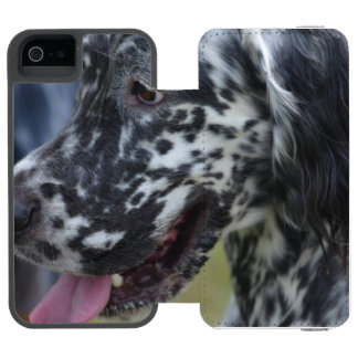 English Setter Up Close Wallet Case For iPhone SE/5/5s