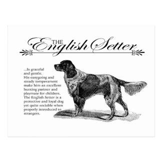 English Setter Vintage Storybook Style Postcard