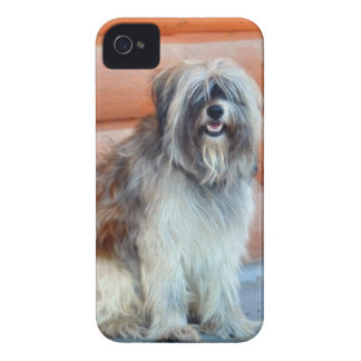 English Sheep-Dog for Pet-lovers iPhone 4 Case-Mate Case