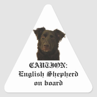 English Shepherd on board sticker