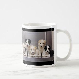 English Shepherd Puppies Granite Hills Animal Care Coffee Mug