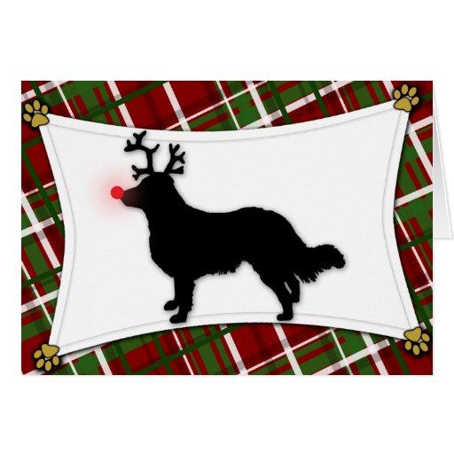 English Shepherd Reindeer Christmas Card