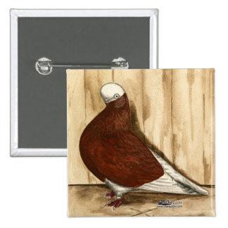 English Shortfaced Bald Pigeon Pinback Button