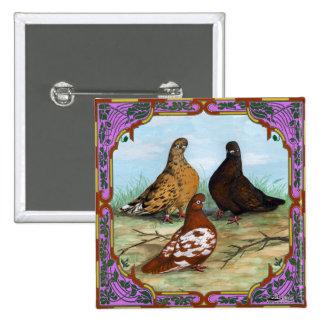 English Shortfaced Pigeons Framed Pinback Button