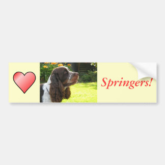 English Springer Spaniel Car Bumper Sticker