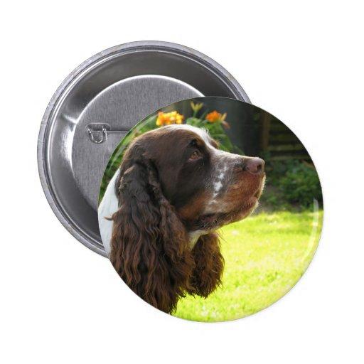 English Springer Spaniel Button
