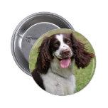 English Springer Spaniel dog beautiful photo, gift 2 Inch Round Button