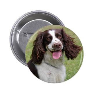 English Springer Spaniel dog beautiful photo, gift Button