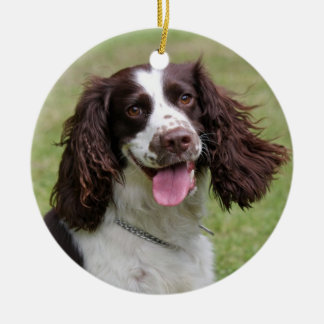 English Springer Spaniel dog beautiful photo, gift Double-Sided Ceramic Round Christmas Ornament