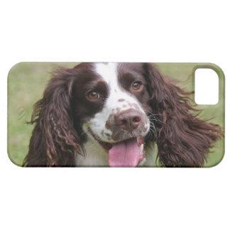 English Springer Spaniel dog beautiful photo, gift iPhone SE/5/5s Case