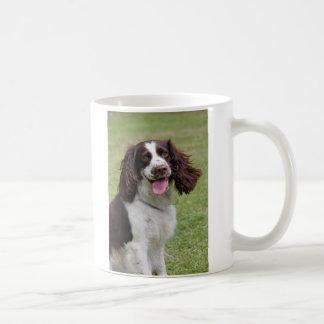 English Springer Spaniel dog beautiful photo, gift Mug