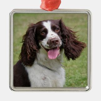English Springer Spaniel dog beautiful photo, gift Square Metal Christmas Ornament