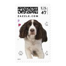 English Springer Spaniel Dog Postage