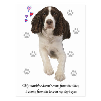 English Springer Spaniel Dog Postcard