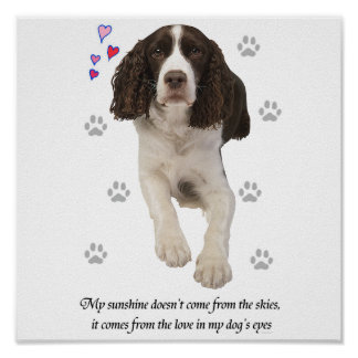 English Springer Spaniel Dog Posters