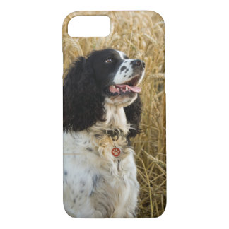 english springer spaniel in wheat.png iPhone 7 case