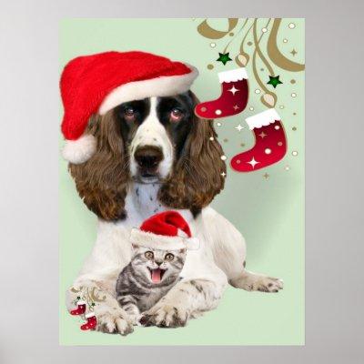 english_springer_spaniel_kitten_christmas_poster-r0d0fbb145a914ae6aea886c6f76fc50d_69w_400.jpg
