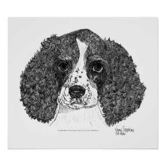 English Springer Spaniel Pen and Ink Posters